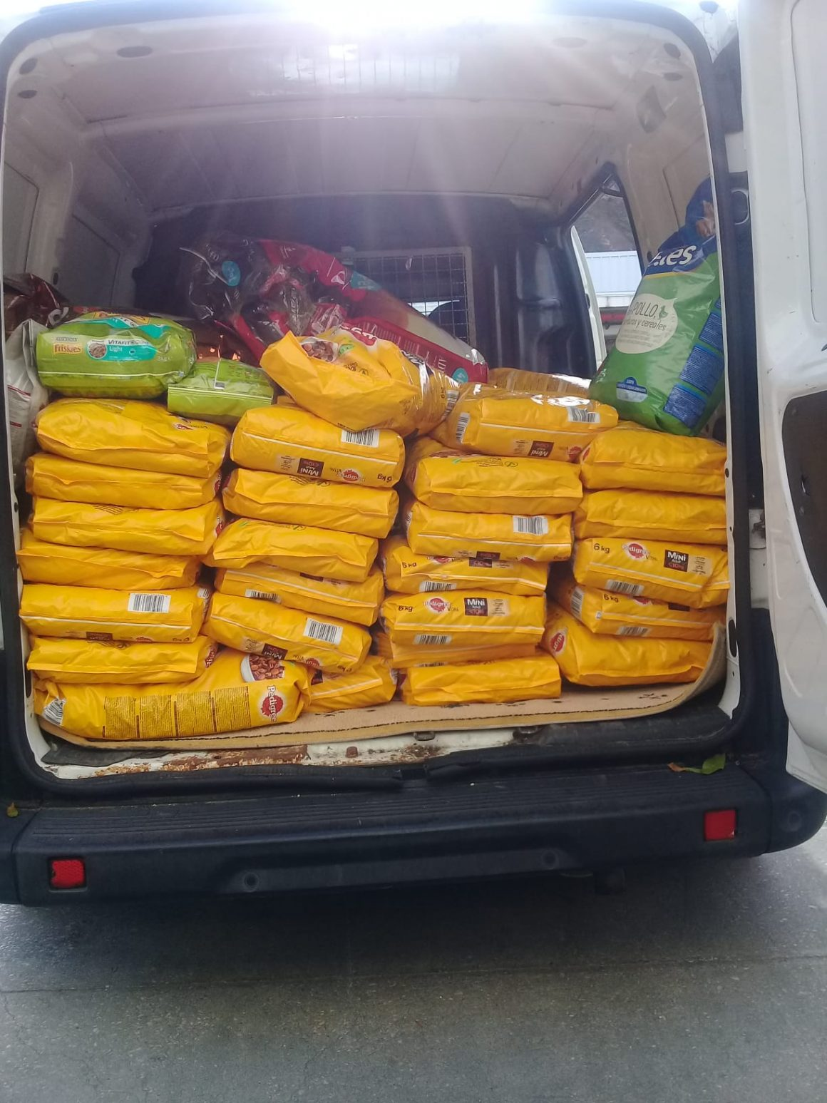 Hoje recebemos donativos do Continente do Cascais Shopping
